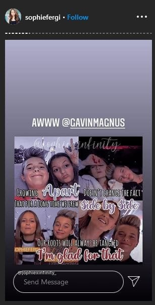 Sophie Fergi's Instagram story about her friendship with Gavin Magnus.
