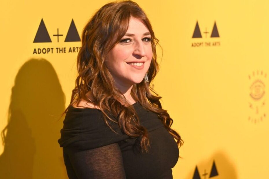 The Big Bang Theory Star Mayim Bialik Never Watched the Show Before Joining