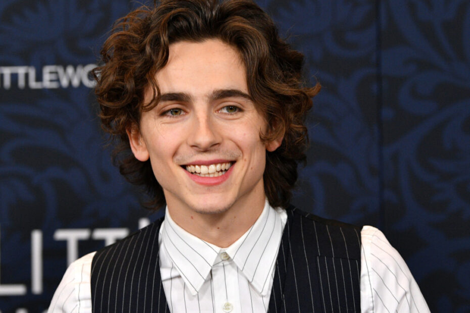 Timothee Chalamet is currently being eyed for a Marvel role.