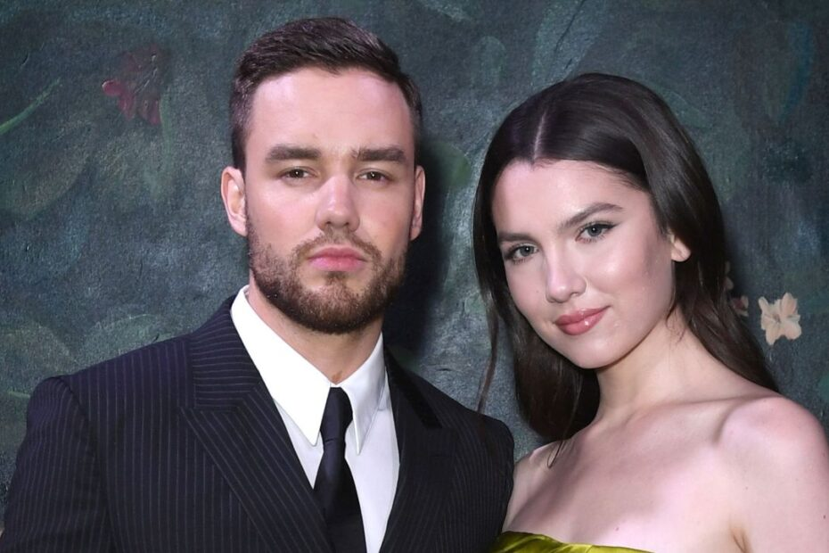 Liam Payne Takes to Instagram to Share Emotional Messages to Ex-Fiancee Maya Henry
